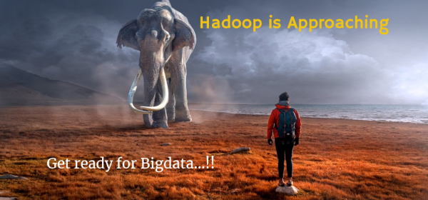 How Hadoop/Bigdata works in real industry