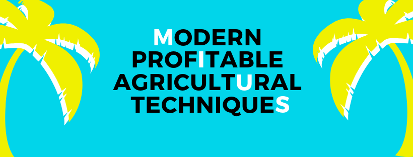 Top list of profitable agricultural techniques